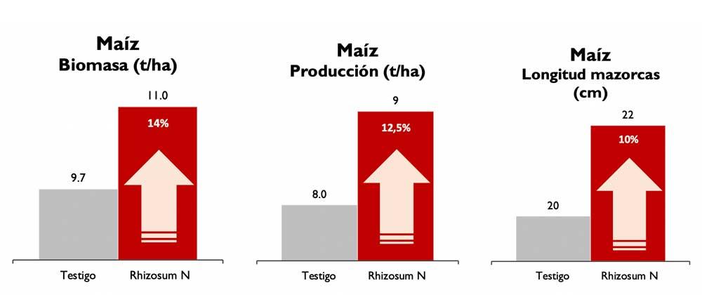 gráficas crecimiento maíz